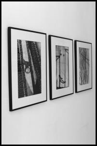 exhibition imago bw