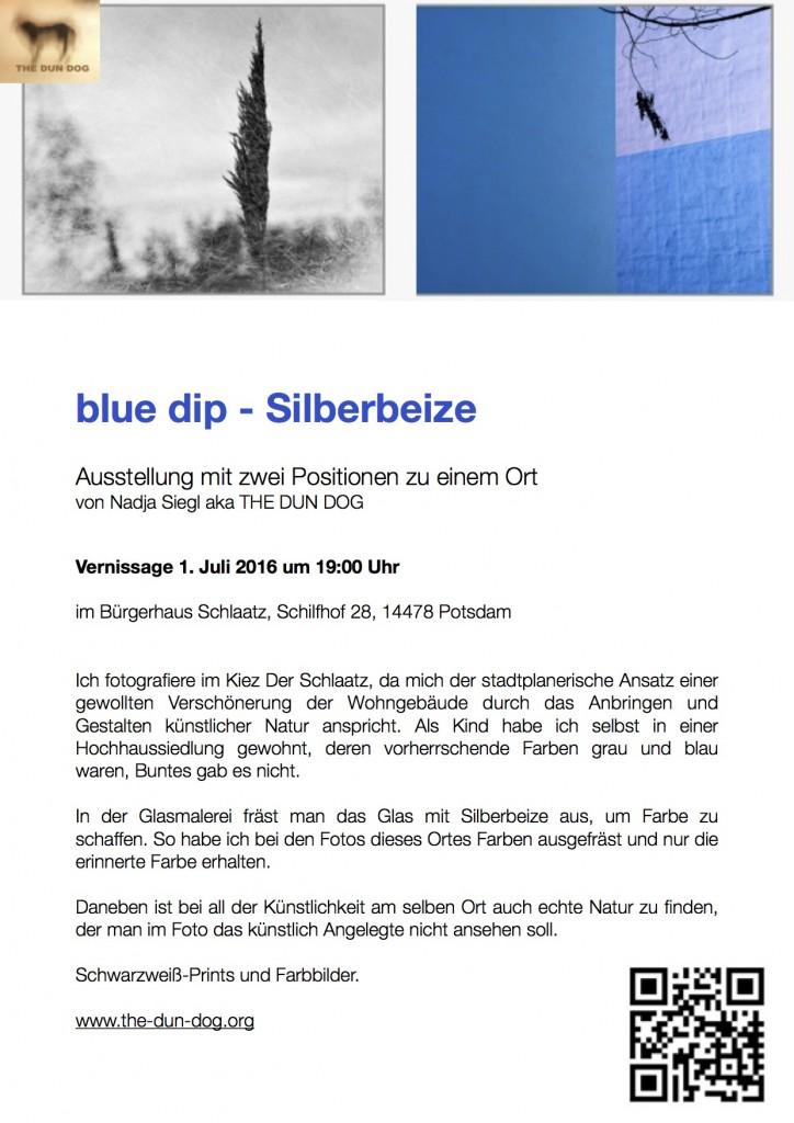 blue dip flyer